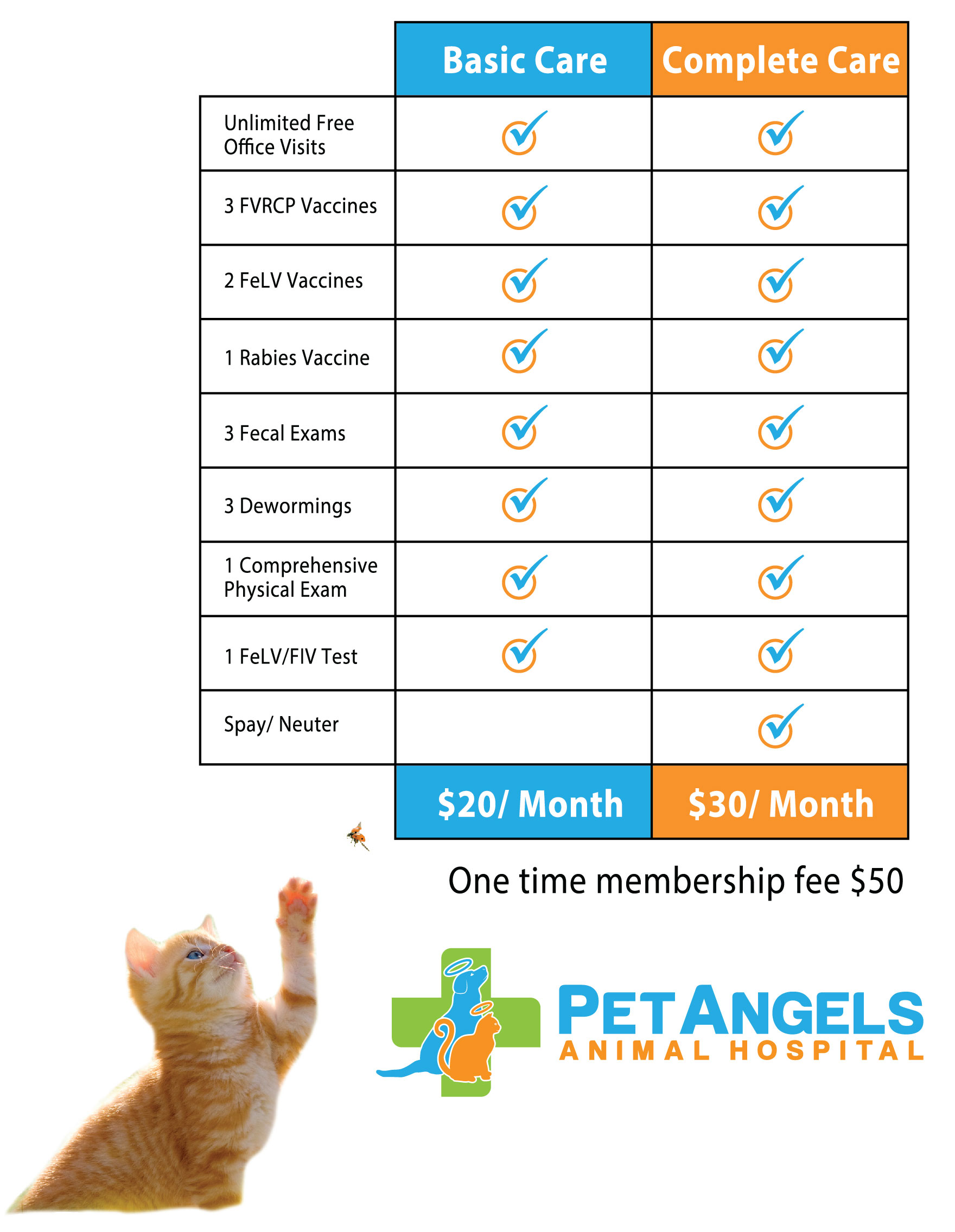 Wellness Plans | Pet Angels Animal Hospital
